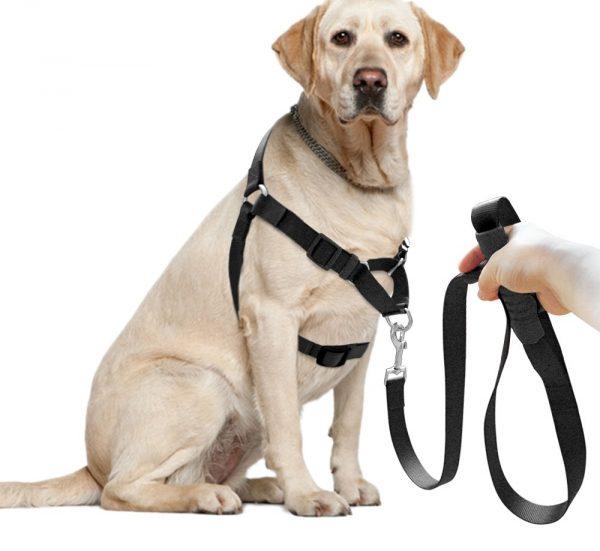 arnes-para-perros-anti-tirones