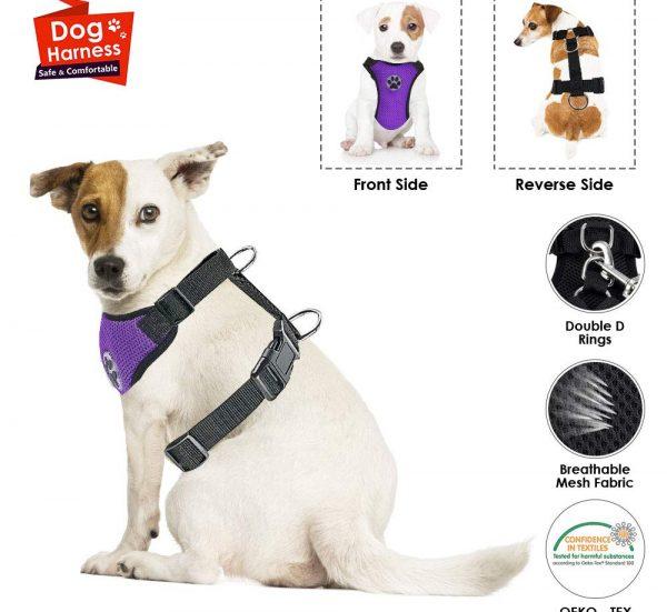 arneses-seguridad-perros