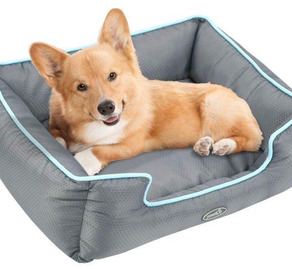 cama-perro-barata