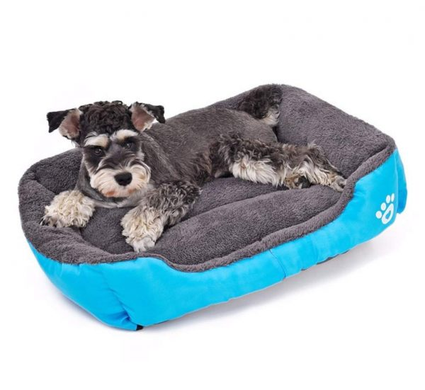 cama-sofa-para-perro